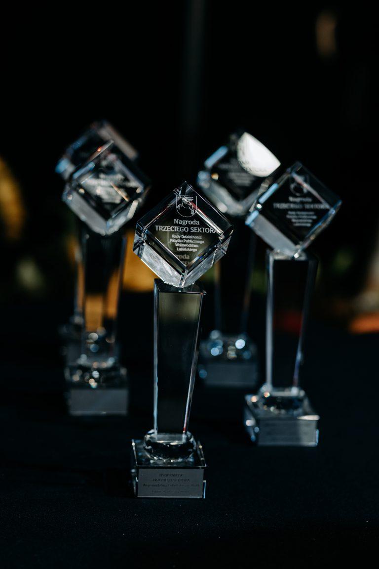 Nagrody Trzeciego Sektora przyznane przez RDPP WL
